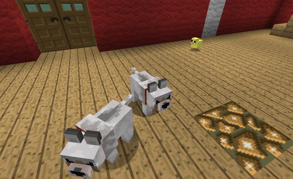 Baby-Animals-Mod-3.jpg
