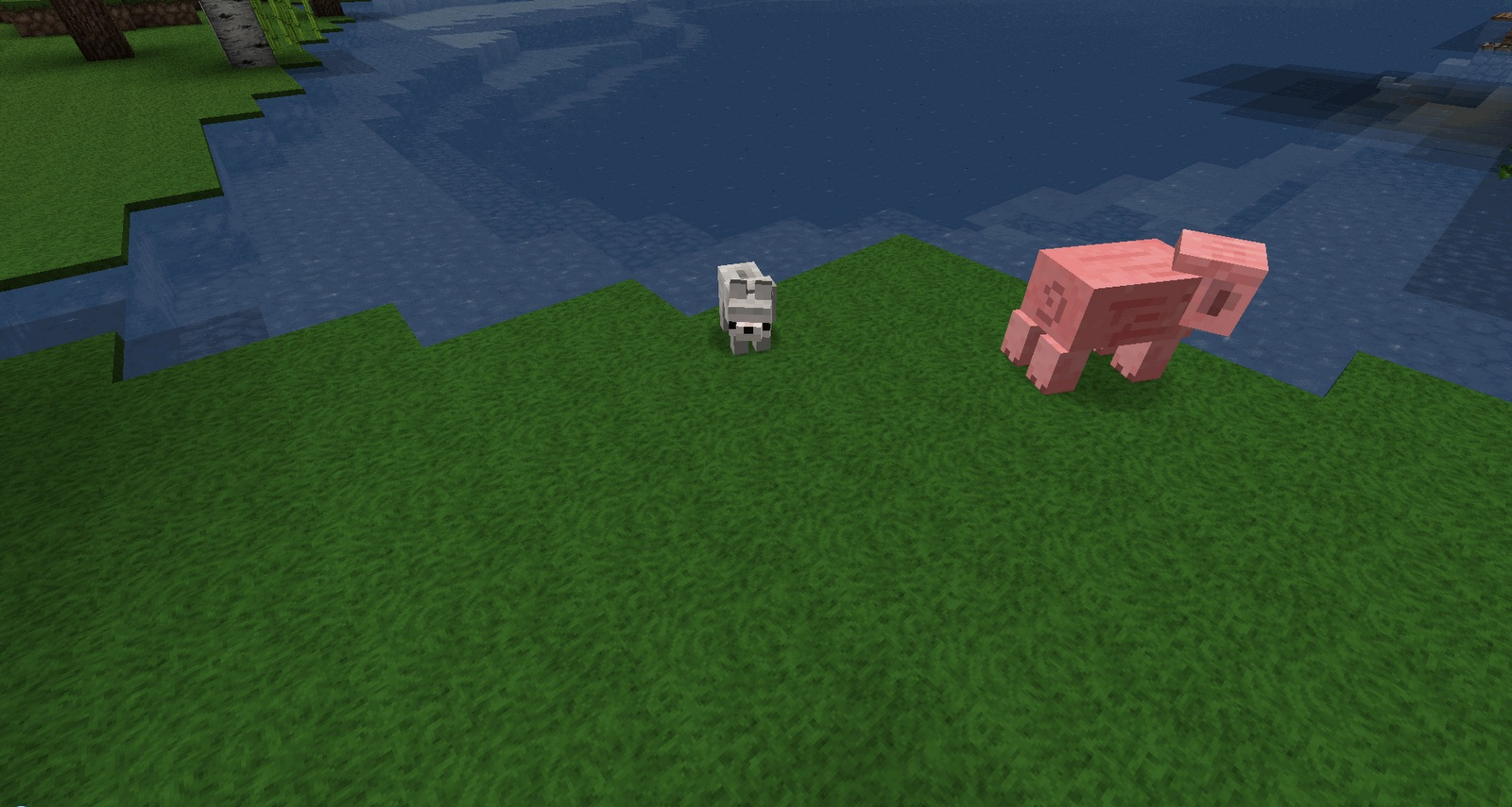 Baby-Animals-Mod-4.jpg