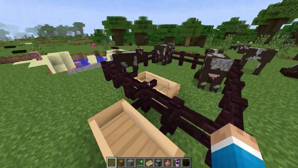 Hungry-Animals-Mod-Screenshots-2.jpg
