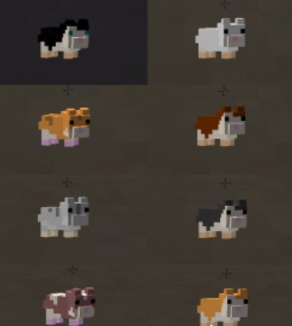 Hamsterrific-Mod-1