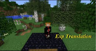 Download Exp Translation Mod  Bottle Up Your Exp 1.12.2 Mods for Minecraft